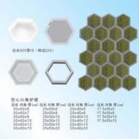 Hexagon Mould 09