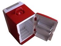 Portable Refrigerator Mold